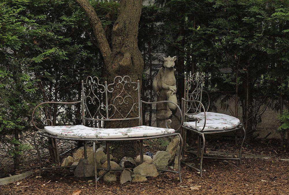 Ambiente Gesundes Tier Garten