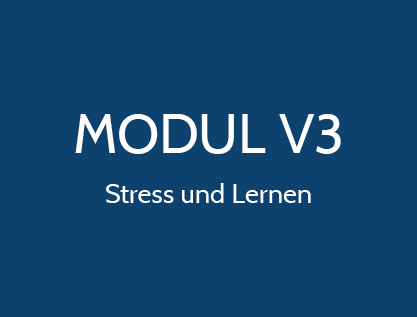 Stress und Lernen Gesundes Tier